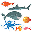 iStockphoto accepted - sea animals